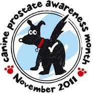 Canine Prostate Awareness Month- November 2011,